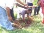 planted 150 trees in Kannakampatti